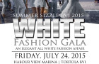SSBVI 2015 White Fashion Gala web flyer